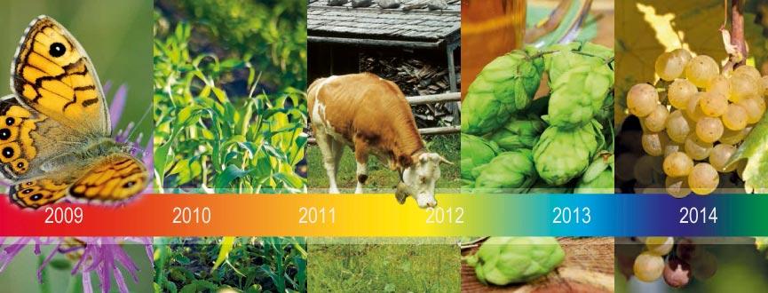Im Freistaat werden seit Jahren weder gentechnisch veränderte Pflanzen angebaut noch zu Forschungszwecken freigesetzt. Bayern ist somit gentechnikanbaufrei. Zeit, Bilanz zu ziehen und in die Zukunft zu blicken.